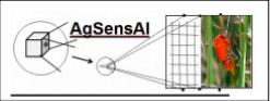 AgSense AI Logo